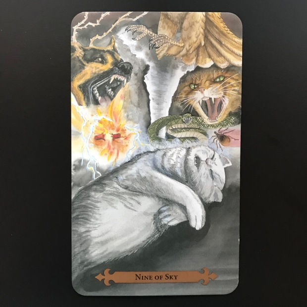 Tarot card meaning Insomnia and Nightmares
